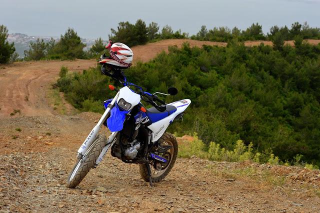 RaceBlue WR250R