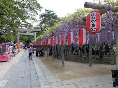 藤祭太々神楽講(平成31年4月29日)