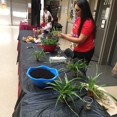 Health promotions plant workshop at uOttawa's EnviroDay