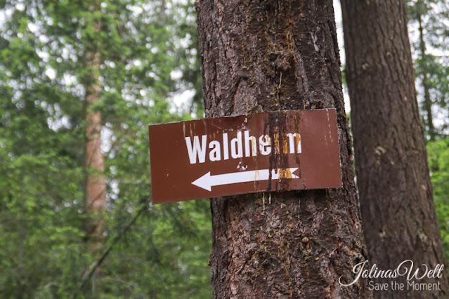Schild am Baum, Pfeil zum Waldheim