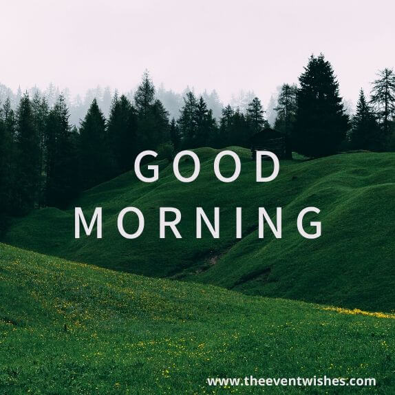 good morning images free download for whatsapp hd download
