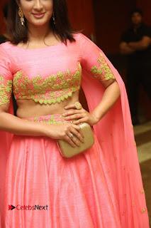 Actress Deepthi Pictures at Jaguar Movie Audio Launch  0086.JPG