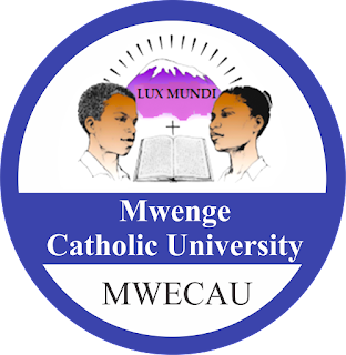 Image result for Mwenge Catholic University (MWECAU)
