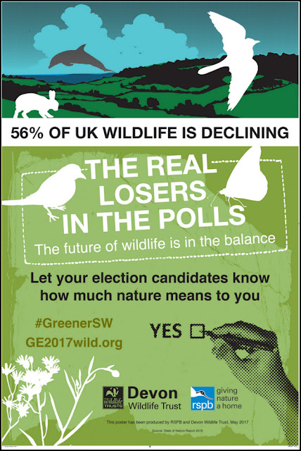 RSPB/Devon Wildlife Trust general election poster