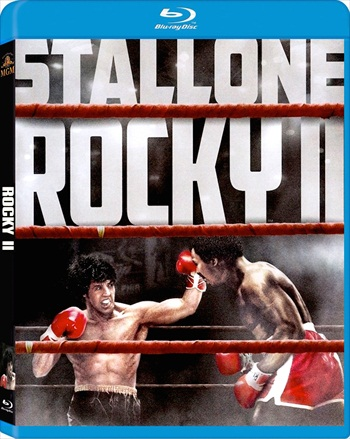 Rocky II (1979) Dual Audio Hindi 720p BluRay 850mb