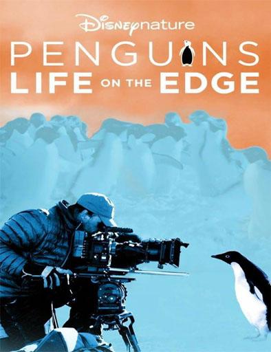 Pingüinos: Vida al límite