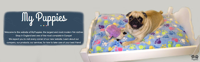pet-clothes-shop-london
