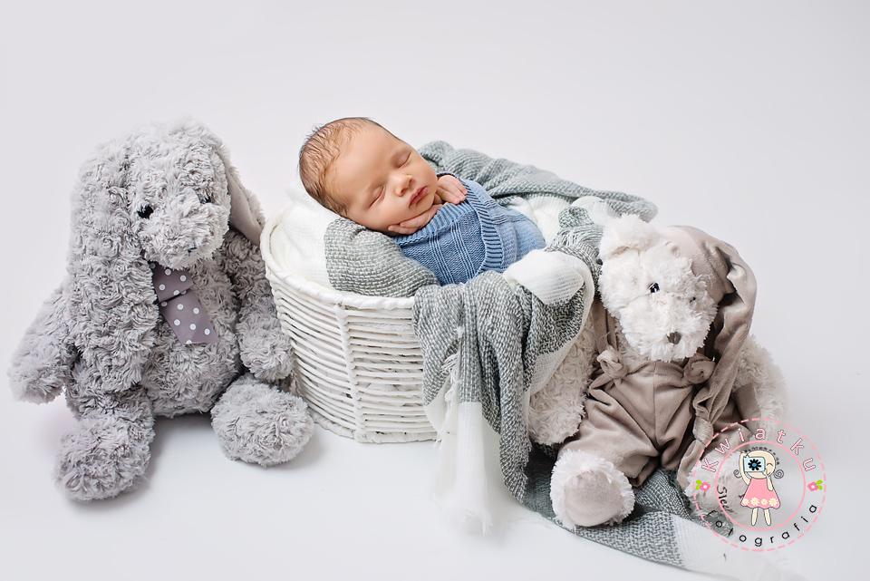 króliczki i misie i niemowle