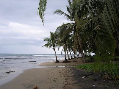 Playa en el Caribe, Puerto Viejo de Talamanca, Costa Rica, vuelta al mundo, round the world, La vuelta al mundo de Asun y Ricardo, mundoporlibre.com