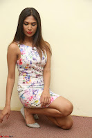 Nishi Ganda stunning cute in Flower Print short dress at Tick Tack Movie Press Meet March 2017 101.JPG