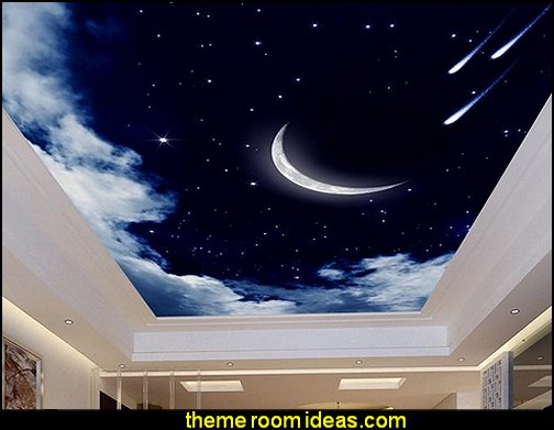 ceiling wallpaper  celestial - moon - stars - astrology - galaxy theme decorating ideas - moon stars bedroom ideas - outerspace theme bedrooms - constellation bedding - night sky wall murals - moon stars wallpaper murals - moon stars bedding - star decorations