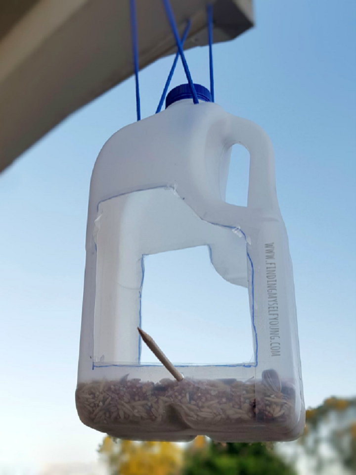 DIY bird feeder made from a recycled milk bottle
