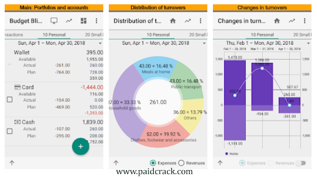 Budget Blitz Pro Money Tracking and Planning APK 6.9.3