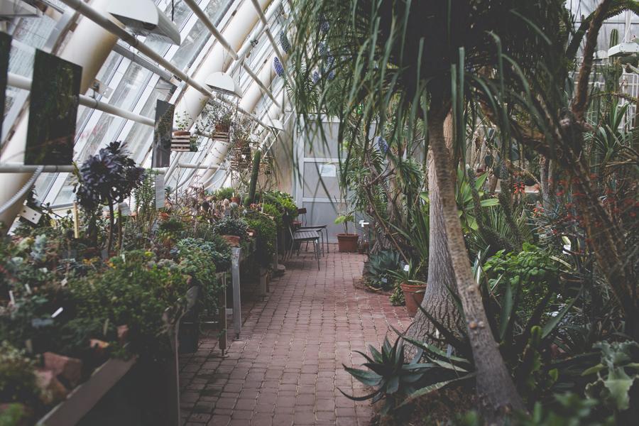 Kasvitieteellinen puutarha Ruissalossa, Turussa, on lapsiystävällinen päiväretkikohde.