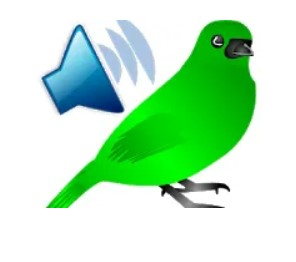 Amazing Birds Voice Technology