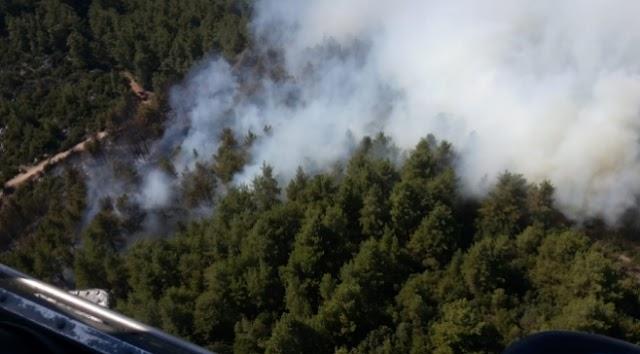 Burdur'da ormanlık alanda yangın