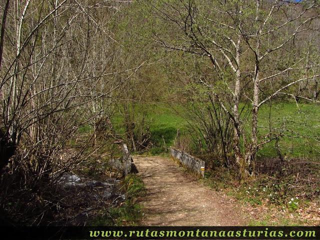 Puente sobre el río Nalón en las inmediaciones de Tarna
