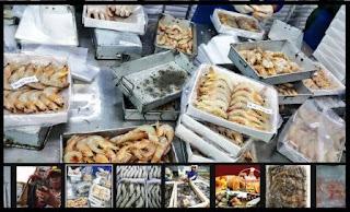 distributor udang windu, lobster segar di daerah Jawa, Sumatera, Kalimantan, Sulawesi dll