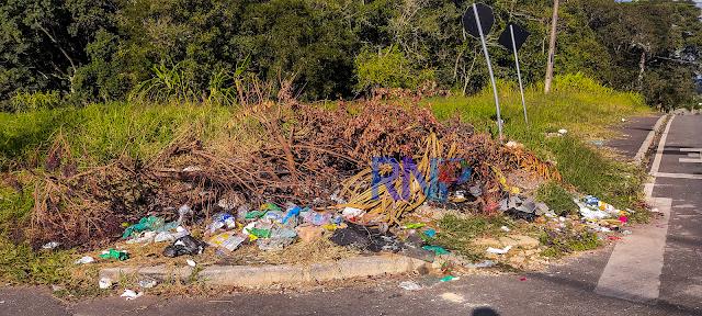 População de Colombo reclama que galhos e entulhos não são recolhidos na cidade: Secretário explica e diz que vai resolver os problemas