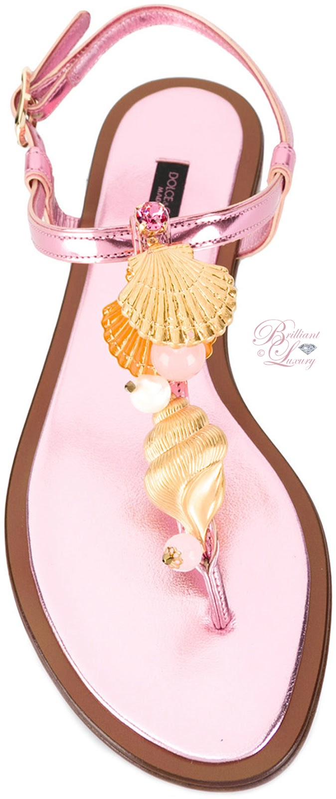 Brilliant Luxury ♦ Dolce & Gabbana Golden Shell Sandals