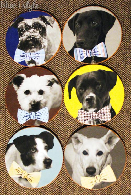 easy diy dog in bow tie coasters