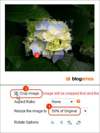 Crop Foto secara Online di Situs ImageResize