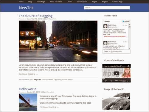 NewTek Free WordPress Theme
