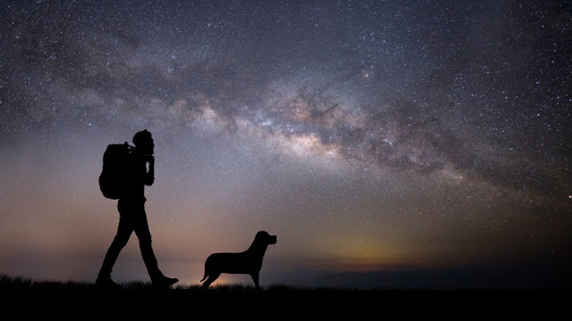backpacking with dog beneath stars