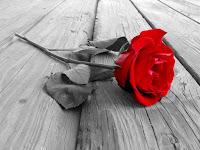 sevgiliye şiir-Aşk Şiirleri