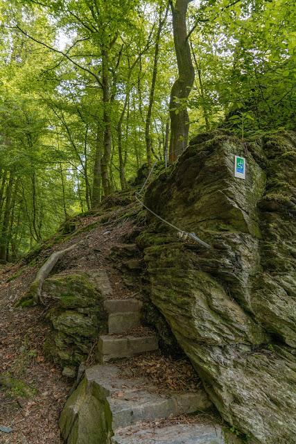 Saar-Hunsrück-Steig Etappe 20 Von Mörsdorf nach Kastellaun  Hängebrücke Geierlay Wandern im Hunsrück Traumschleifen-Hunsrück 13