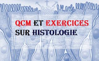exemple exam HISTOLOGIE et QCM HISTOLOGIE avec CORRECTION