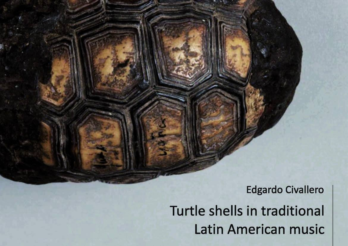Turtle shells in traditional Latin American music