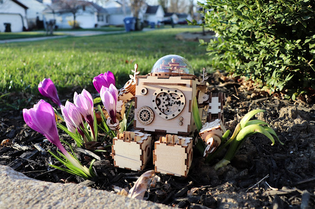 A wooden robot sitting in a cluster of purple crocuses with a lawn and houses in the background.