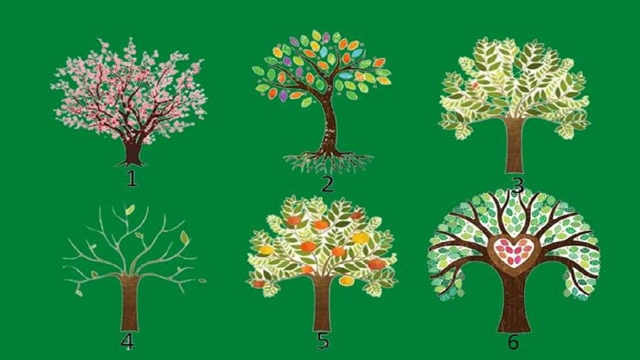Tes Kepribadian: Pohon Mana yang Menarik Perhatian Kamu, Akan Mengungkapkan Sifat Kepribadian Dominanmu