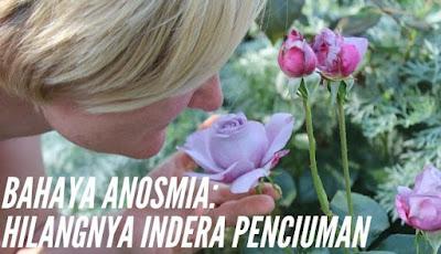 Anosmia kondisi di mana indera penciuman kehilangan kemampuannya