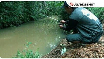 cara mancing ikan lele