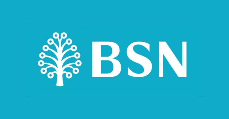 Jawatan Kosong di Bank Simpanan Nasional BSN