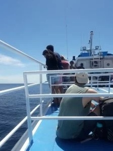 Fast-Boat-Patagonia-Express
