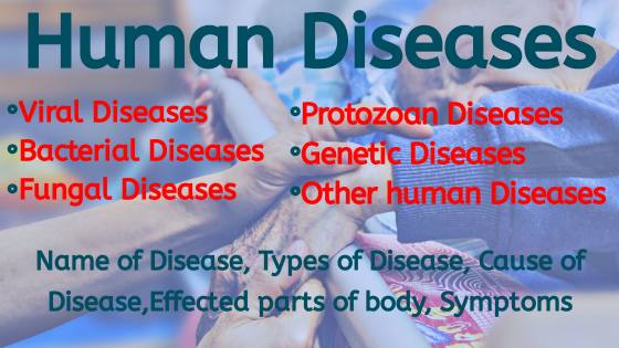 Viral and Bacterial Human Disease and health for exams