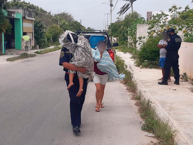En Chicxulub Puerto un hombre de 68 años de edad, una mujer de 44 y una niña de tres sufrieron picaduras de abejas en el patio de su vivienda.