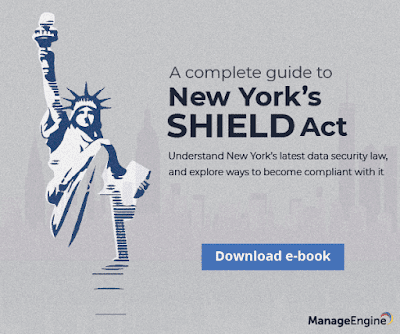 New York's SHIELD Act