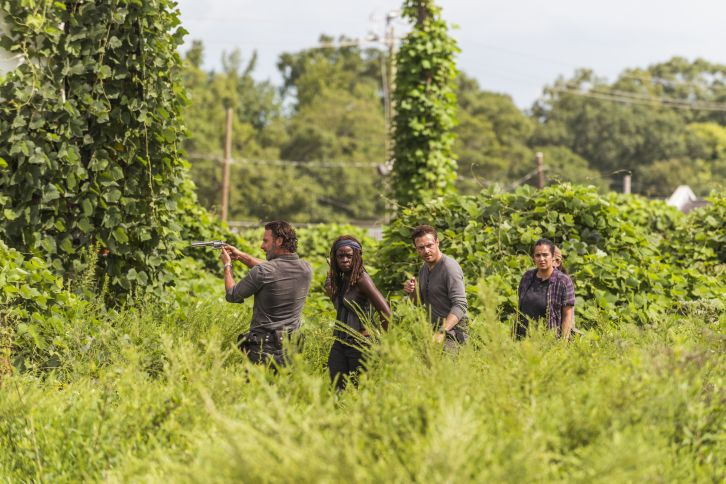 The Walking Dead - Episode 7.09 - Promo, Promotional Photo, Synopsis + Sneak Peek *Updated 10th January 2017*