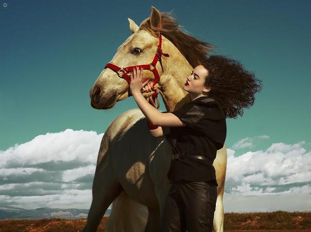 https://www.deviantart.com/lidiavives/art/Equus-Ferus-V-547936478