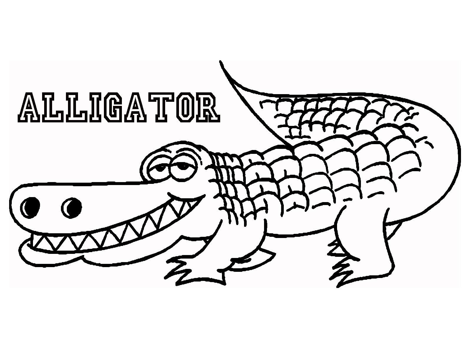 alligator coloring pages free - photo#12