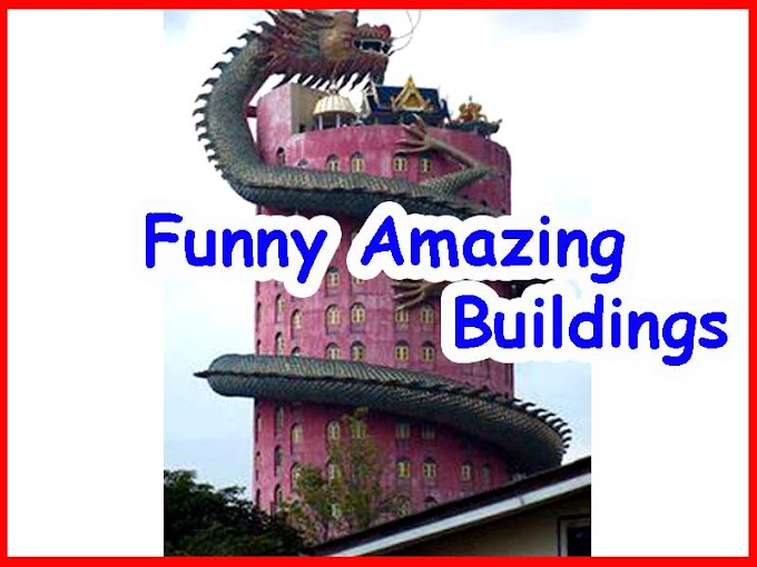 Amazing And Funniest Construction Real Photos