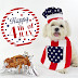 How to Care for Your Dog on the 4th of July Holiday