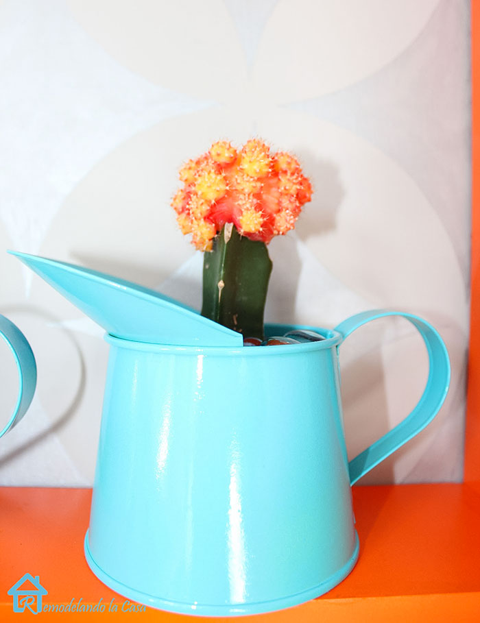 Blue teal container on orange shelf