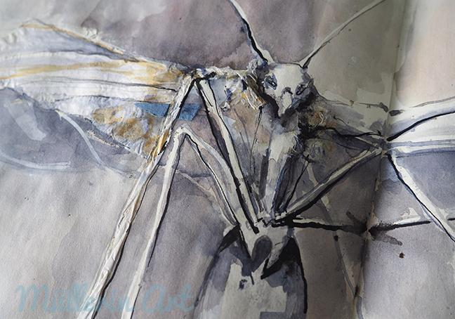 Insektenzeichnung ©muellerinart