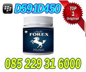 Image Result For Forex Asli Di Bandung