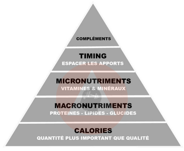pyramide nutrition calorie proteine musculation fitness